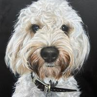 1 of my 50 dog portrait commissions 17cm x 23cm. Space still available.
