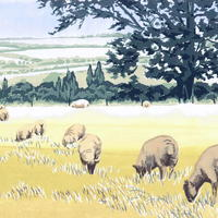 """""""Ewelme Sheep"""" hand-printed acrylic, A3-size deckle-edged image on A2 paper £65"""