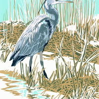 """""""Heron in the Reedbeds"""" hand-printed acrylic, A3-size deckle-edged image on A2 paper £65"""