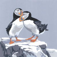 """""""Puffin Love-In"""" hand-printed acrylic, 22cm square deckle-edged image on A3 paper £48"""