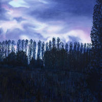 Evening Poplars from Kings Meadow/Oil on Canvas/509mm x 406mm