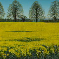 The Road to Ashampsted: Spring/Oil on Canvas/300mm x 1000mm