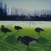 Park Life 2: Four Winter Geese