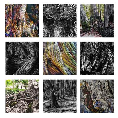 A selection of ink-on-kaolin trees