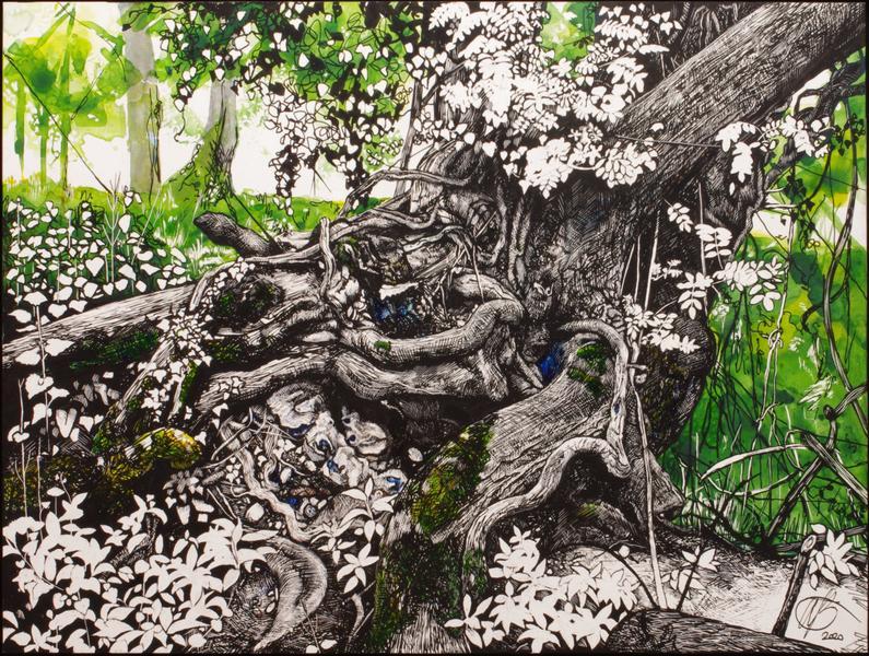 """Flint / Ink on kaolin / 16"""" x 12""""  - ash tree near Kingsclere"""