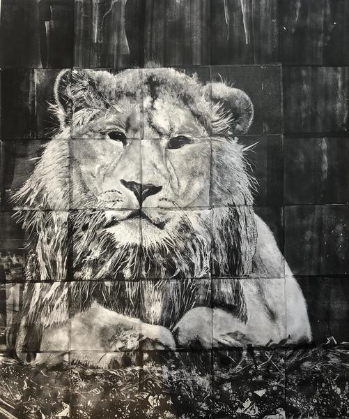 Lion/ Monoprint using gelplates/ 75x90cm