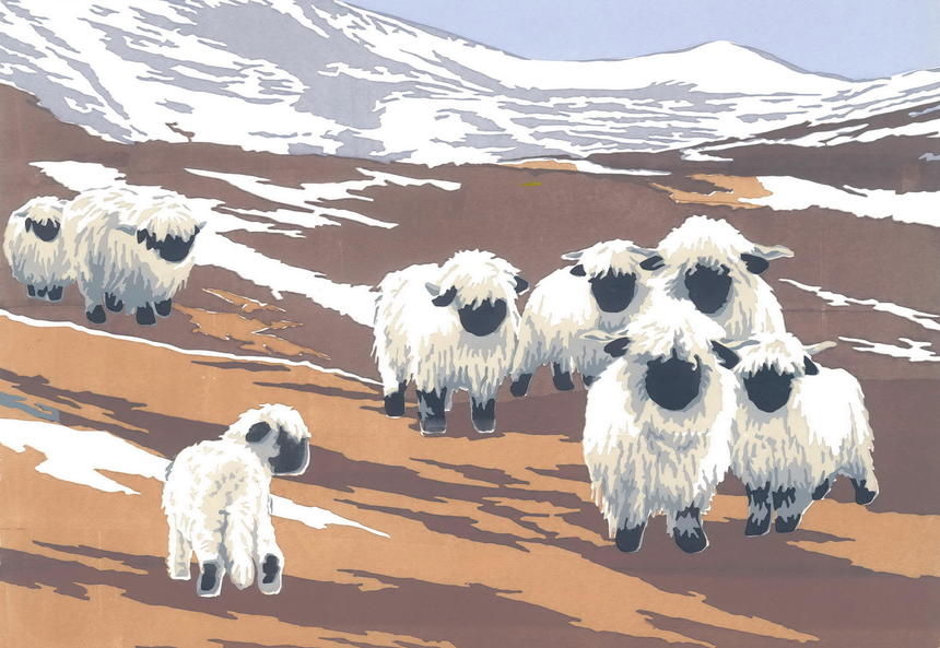 Valais Black-nosed Sheep, hand-printed acrylics, A3 image on A2 paper £65