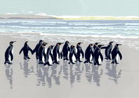 King Penguins acrylic deckle-edged screen print A3 on A2 paper, £65